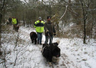2012-02-12-TNS-snertwandeling-Oostvoorne---Rockanje--14-