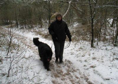 2012-02-12-TNS-snertwandeling-Oostvoorne---Rockanje--17-