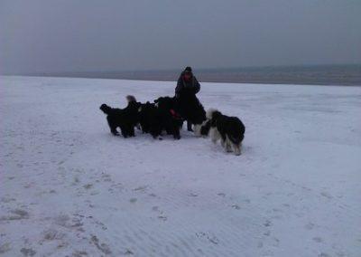 2012-02-12-TNS-snertwandeling-Oostvoorne---Rockanje--66-