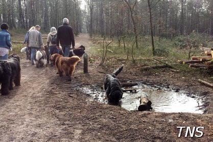 2014-03-30-wandelen---14-