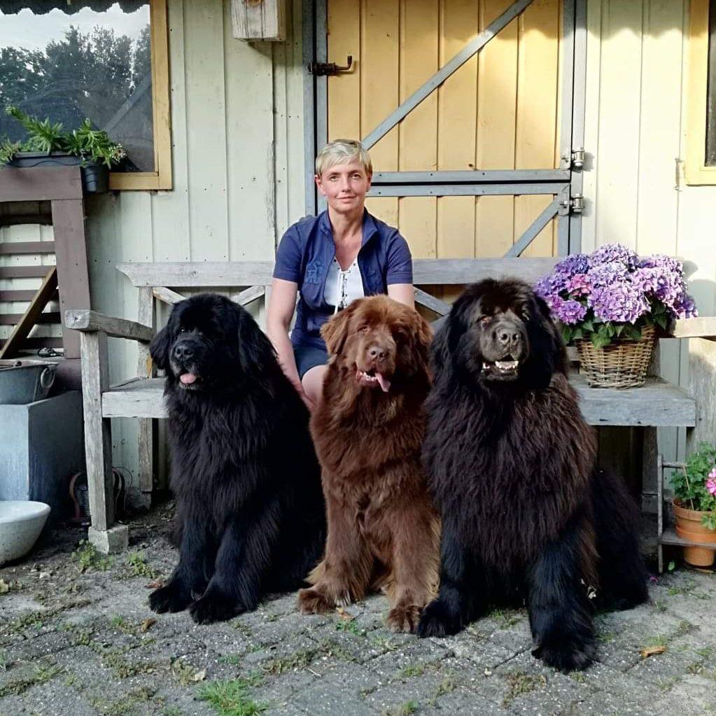 Mandy van Beek